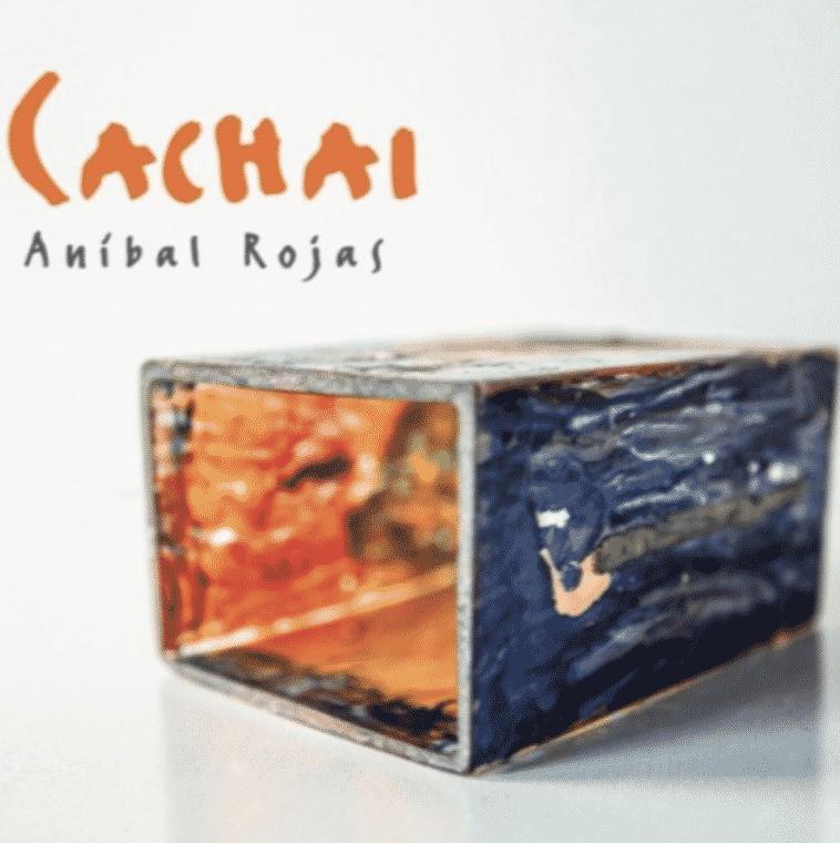Anibal Rojas | Cachai