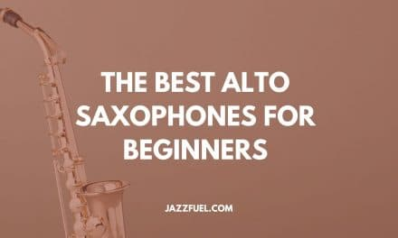 Best Alto Saxophone for Beginners (2020 Guide)